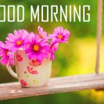 246+ Good Morning Images Photo Pictures With Flowers HD Download