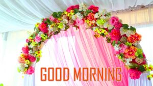 Flower Good Morning Photo Pictures Download