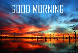 Best New Amazing Good Morning Photo Pictures Download