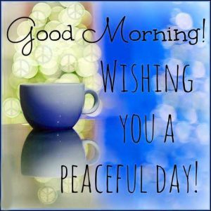 Good Morning 3D Wishes Photos