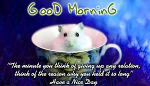 Good Morning Images Wallpaper Pictures For Her With Quotes