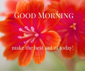 Free HD Good Morning Images Wallpaper For Her Download