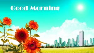 Good Morning Photo Pics With Flower Download