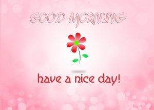 Free HD Good Morning Photo Pictures Download