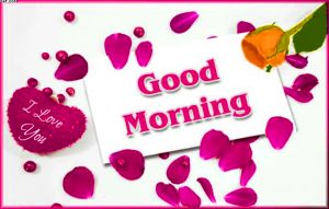 Good Morning Tea Cup Images With I love you