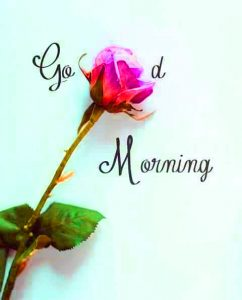 Good Morning Images Photo Pic For Her Download