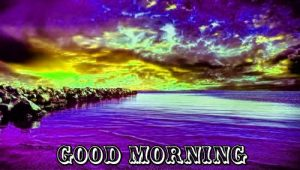 Free Best Happy Good Morning Photo Pics For Whatsaap