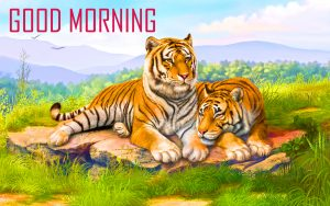 Animal Good Morning Images Photo Pictures For Whatsaap