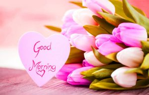 Good Morning Images Wallpaper For Her Free Download With Flower