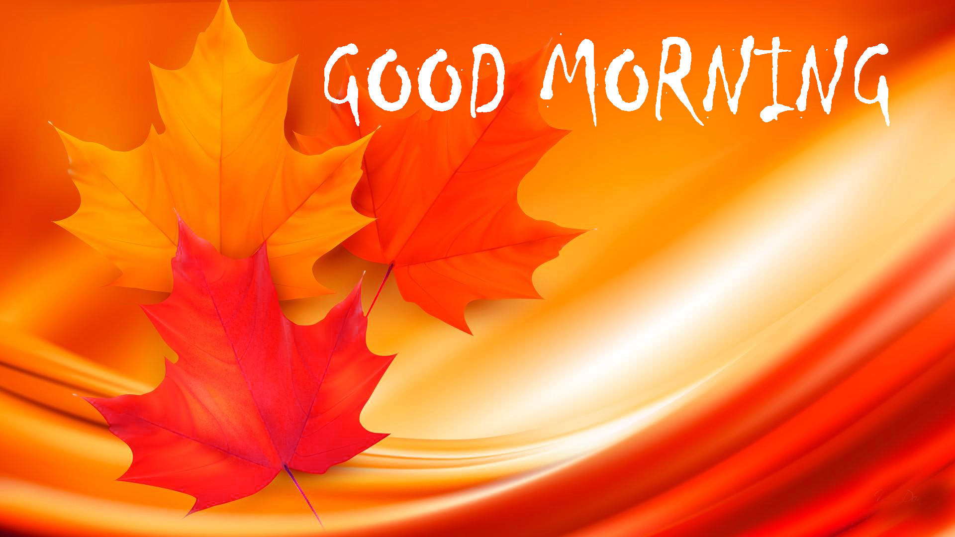 169 Good Morning Status Images Hd Download Good Morning Images Good Morning Photo Hd Downlaod Good Morning Pics Wallpaper Hd