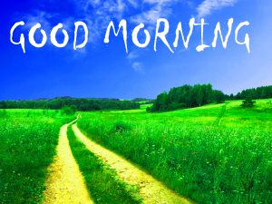 Free Good Morning Images Download