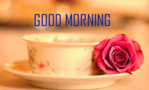 Good Morning Tea Cup Photos Download For Whatsaap