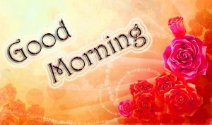 Top Good Morning Images Photo Pictures Download