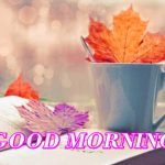 141+ Good Morning Tea Cup Photos Images Wallpaper Download