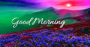 Good Morning Photo Pictures For Her Download