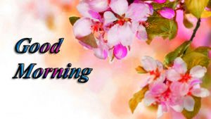 Free HD Good Morning Images Photo pics Download