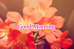 Good Morning Images Pic Photo With Flower