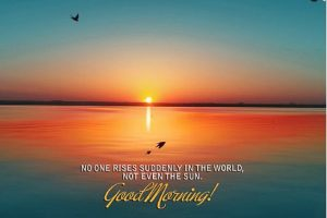 Sunshine Good Morning Images Photo Pictures Download
