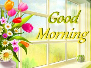Free Best Happy Good Morning Photo pictures Free Download
