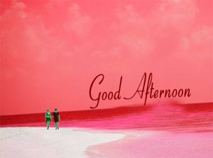 Good Afternoon Images HD Photo Pics Download