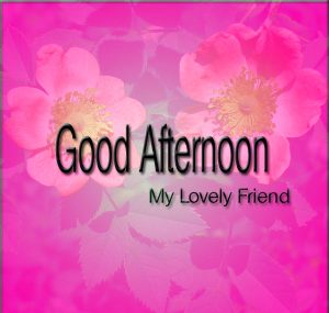 Good Afternoon Images Photo Pics For Friends