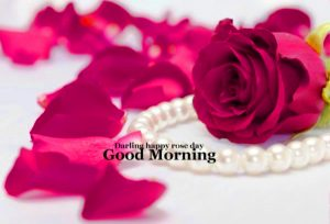 HD Good Morning Images Wallpaper With Flower