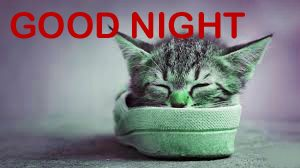 Funny Good Night Images Photo Pic Free Download