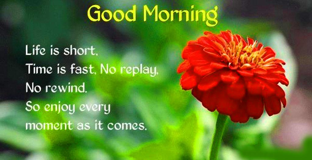 178+ HD Good Morning Images Wallpaper Download