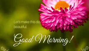 HD Good Morning Images Wallpaper Free Download