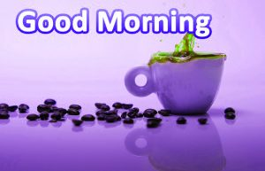 Whatsaap & Facebook Good Morning Images Wallpaper Pictures Free For Whatsaap