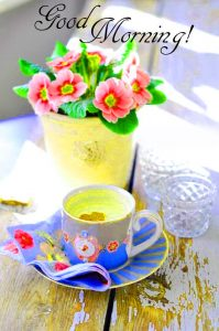 Whatsaap & Facebook Good Morning Images Pictures With Flower