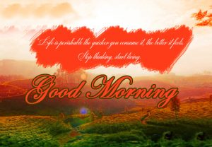 HD Good Morning Images Photo Pics Wallpaper Download
