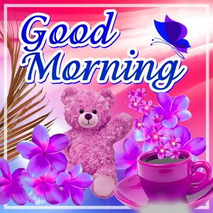 Whatsaap & Facebook Good Morning Images Photo Wallpaper Download
