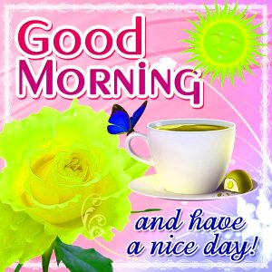 Whatsaap & Facebook Good Morning Images Pictures Pics