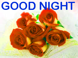 Romantic Good Night Images Photo Pics With Red Rose