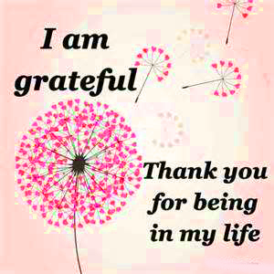 Thank You Images Pictures Free Download