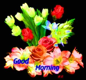 Whatsaap & Facebook Good Morning Images Photo With Flower