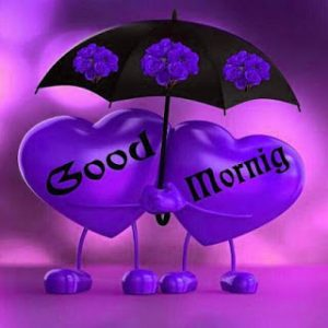 Whatsaap & Facebook Good Morning Images Wallpaper Pictures Download