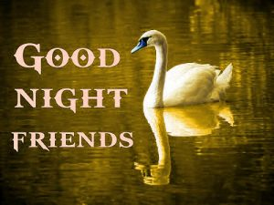 3D Good Night Images Photo Download For Whatsaap