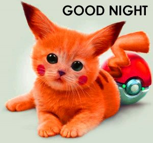 Cute Good Night Images Wallpaper Pictures For Whatsaap