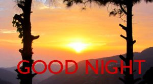 Good Night Images Photo Pics In HD Download
