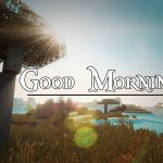 Good Morning Image with Nature 13
