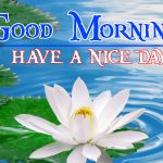Good Morning Image with Nature 4