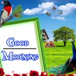 Good Morning Image with Nature 45