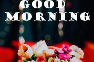 Good Morning Photo HD With Flower