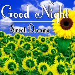 Good Night Wishes Images 38