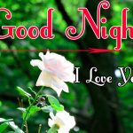Good Night Wishes Images 99