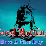 Lord Shiva Good Morning Images 9