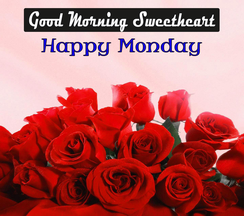 Rose Monday Good Morning Wishes Images