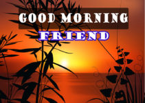 Good Morning Images Download For Friends